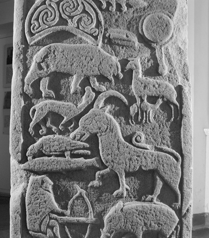 Detail of reverse of the Drosten Stone Pictish cross slab (St Vigeans no. 1).