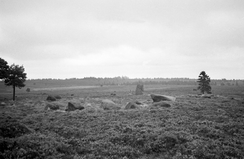 General view of standing stone and stone settings on moor above Foulis Wester.