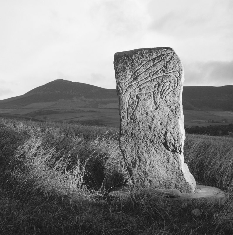 View of face of Craw Stane Pictish symbol stone.