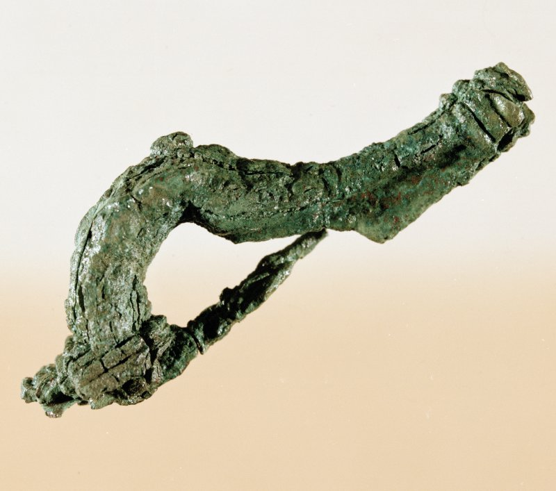 Post excavation photograph : fibula found during excavation.