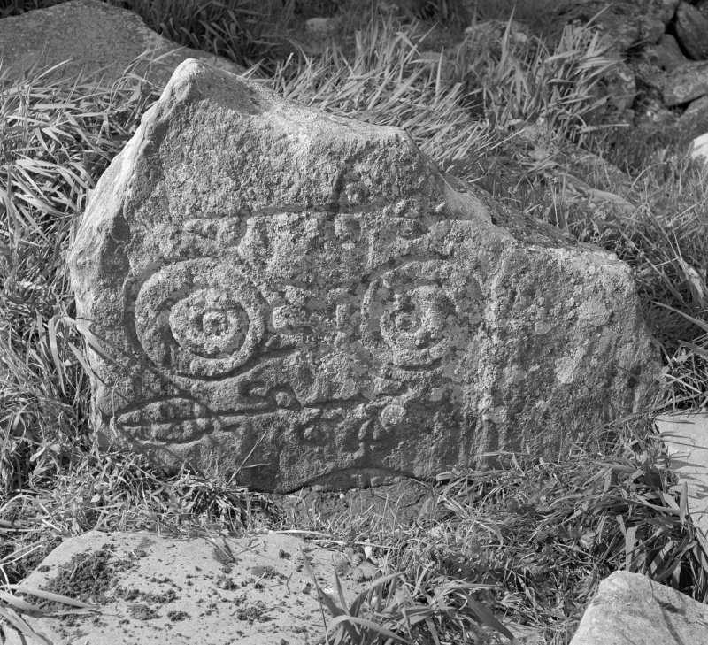 View of face of Congash no.2 Pictish symbol stone, Parc-an-Caipel.