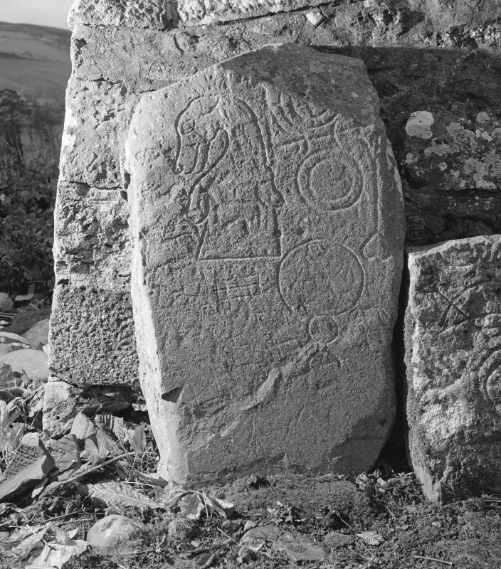 View of face of Rhynie no. 5 Pictish symbol stone.
