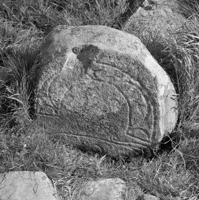 View of face of Congash no.1 Pictish symbol stone, Parc-an-Caipel.