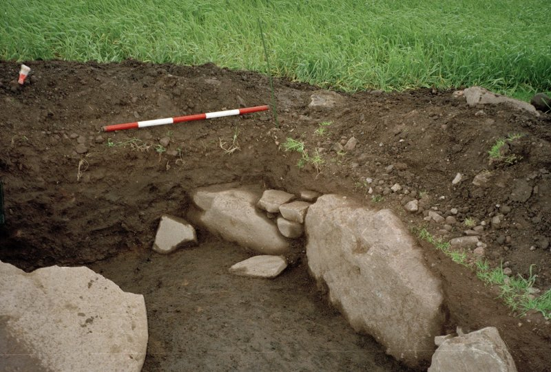 View of the SW corner of the excavation trench. Scale in 200mm divisions
