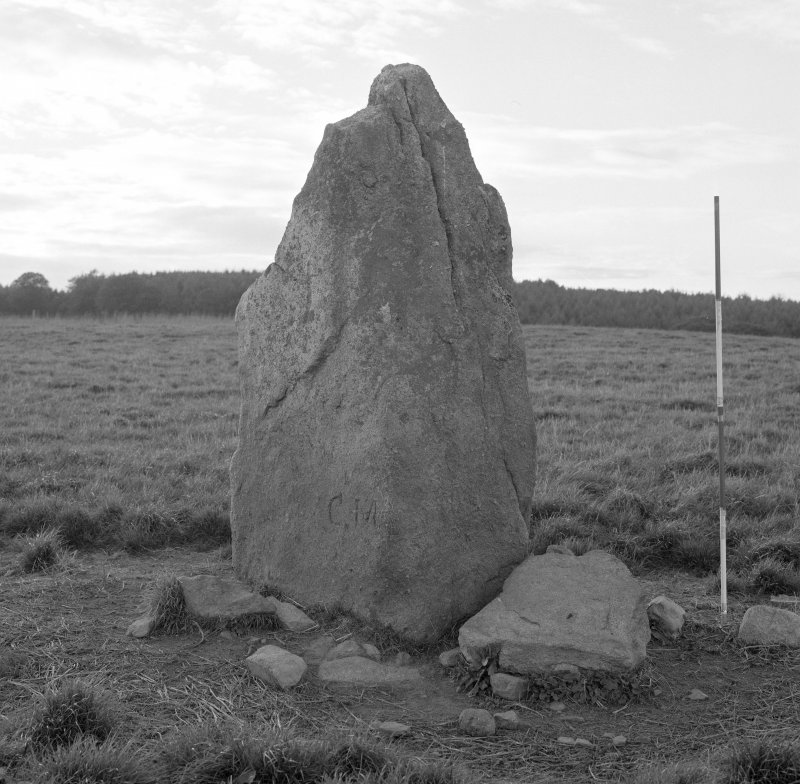 Detail of easternmost stone, viewed from East. (Scale in 0.5m divisions.)