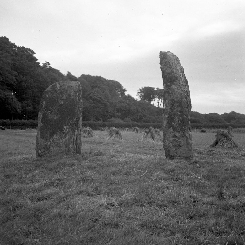 Carse, Standing Stones. General view.