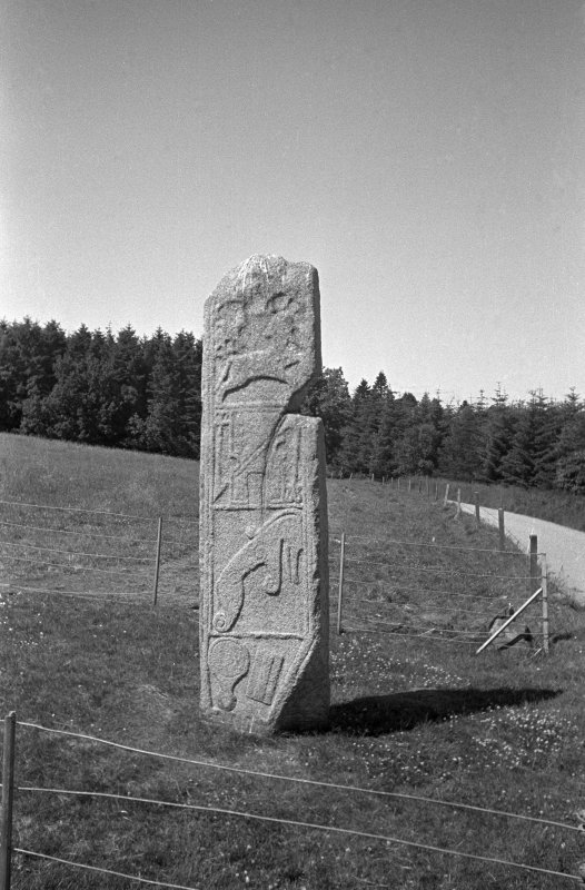 Maiden Stone. General view from E.