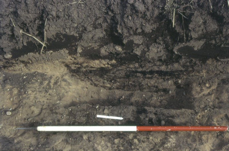 Slide 3/4. Trench A 1020