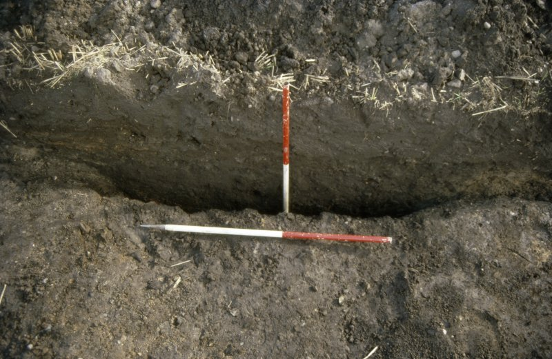 Slide 5/34. Trench F Ditch Section