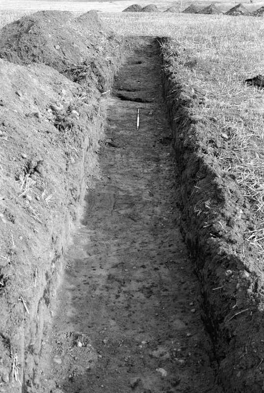 View of excavated trench