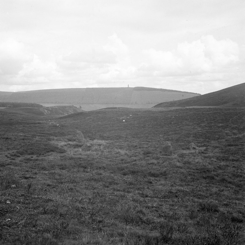 General view of Corogle Burn stone circle.