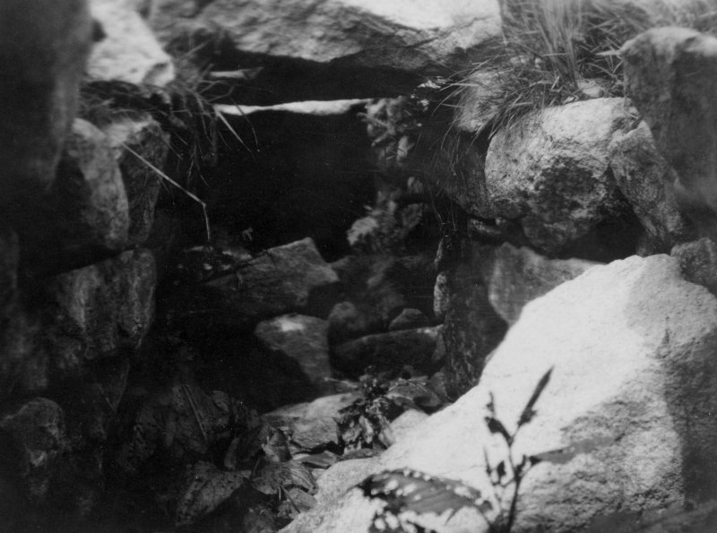A view into the interior of the Iron Age souterrain on Hirta, St Kilda. This image was sent to RCAHMS by a Captain Grant, 1924.
