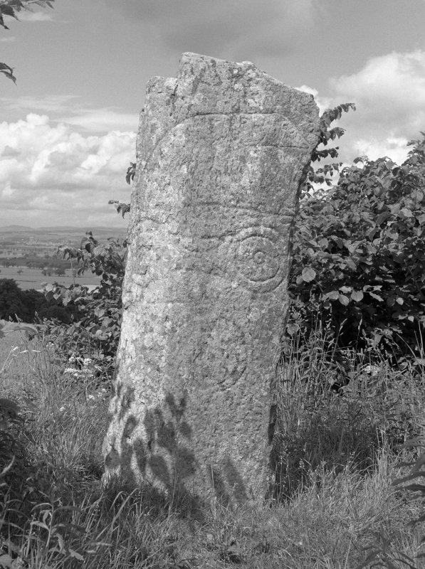 View of face of Keillor Pictish symbol stone.