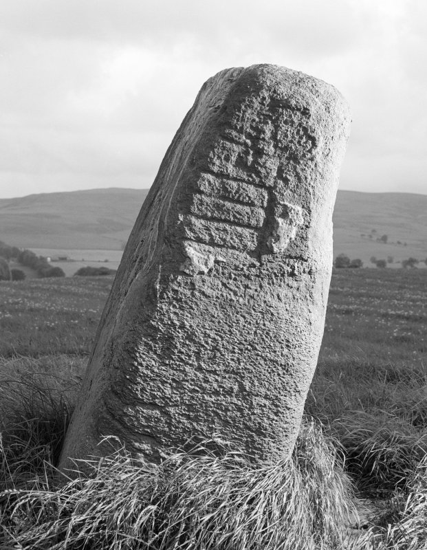 View of standing stone with Pictish symbols, Peterhead Farm, Blackford.