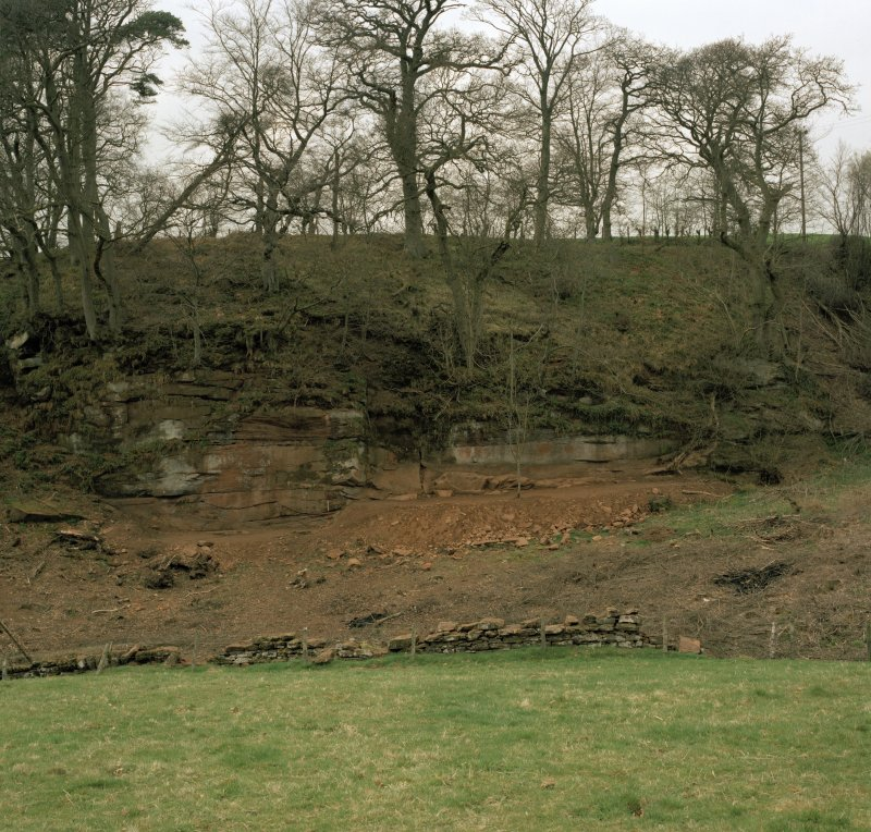 General view of Ballochmyle outcrop from the south east.