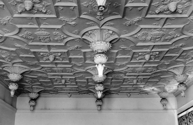 Interior. Detail of ceiling in drawing room.