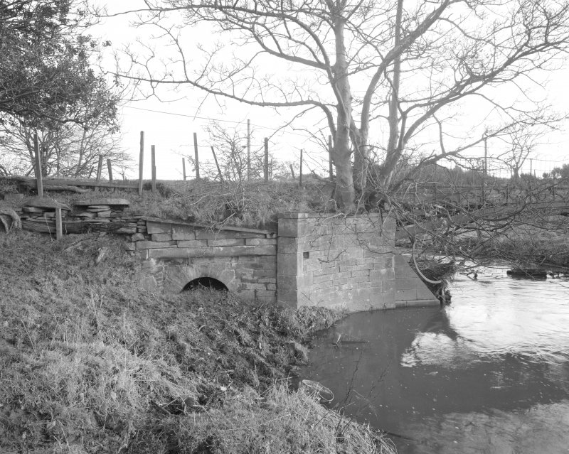 Linlathen East Bridge View from west of west side of N abutment, showing partially silted arch of flood channel