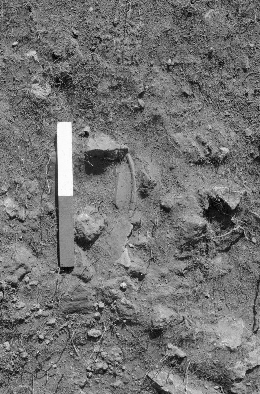 Excavation photograph : area VII - pot 266 in situ, in f702.
