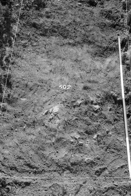 Excavation photograph : area V - f502, from north (detail).