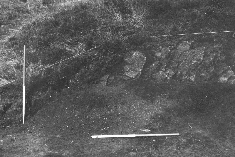 Excavation photograph : area II - f202 against 203, looking north-east.