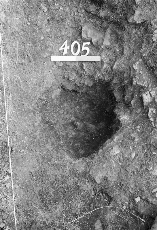 Excavation photograph : area IV - f405, posthole, vertical.