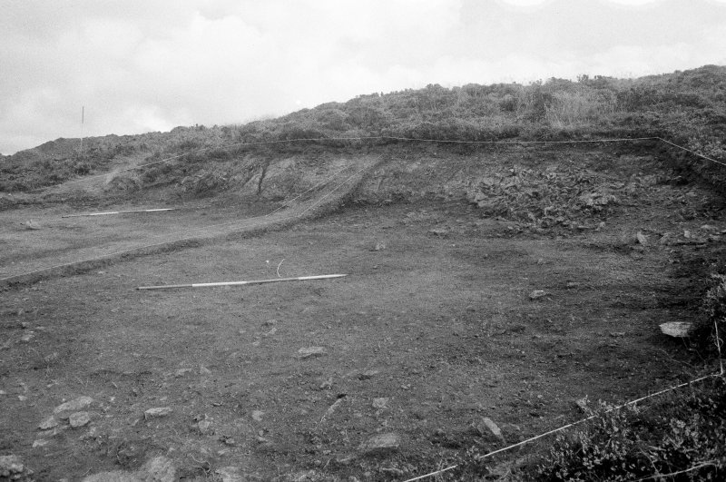 Excavation photograph : area II - f207, looking north, north-east.