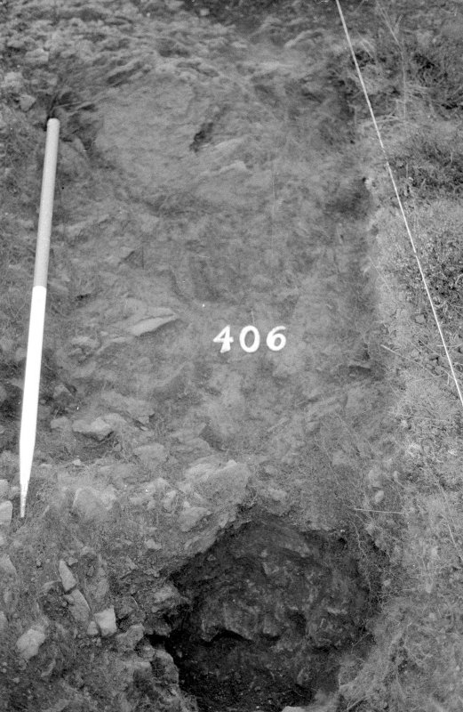 Excavation photograph : area IV - f406, from east, detail.