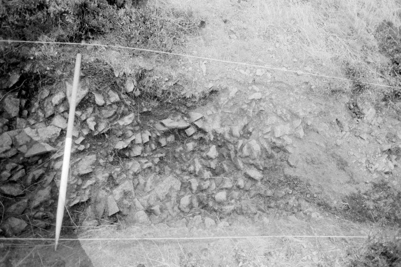 Excavation photograph : area IV - f402 pseudo ditch created from natural at west end, from north.