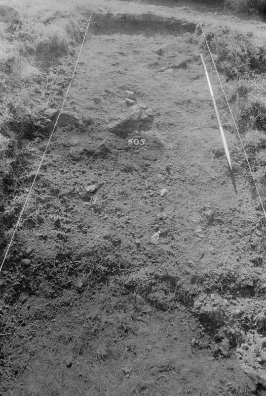Excavation photograph : area V - f503, from north.