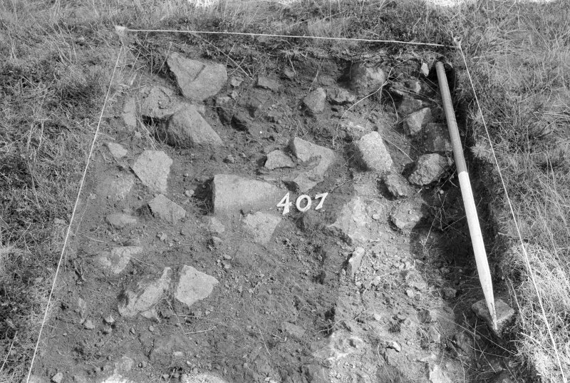 Excavation photograph : area IV - f407, from west.