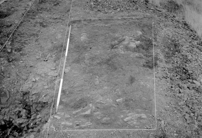 Excavation photograph : area II - f213, looking north? (see photographic register)