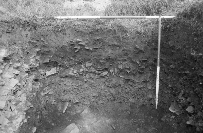 Excavation photograph : area III - east end section, facing east.