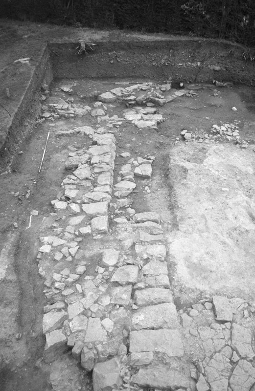 Jedburgh Abbey excavation archive Frame 29: Area 1: N end of Trench J, showing walls 194, 198 and 197 and floor 256. From W.