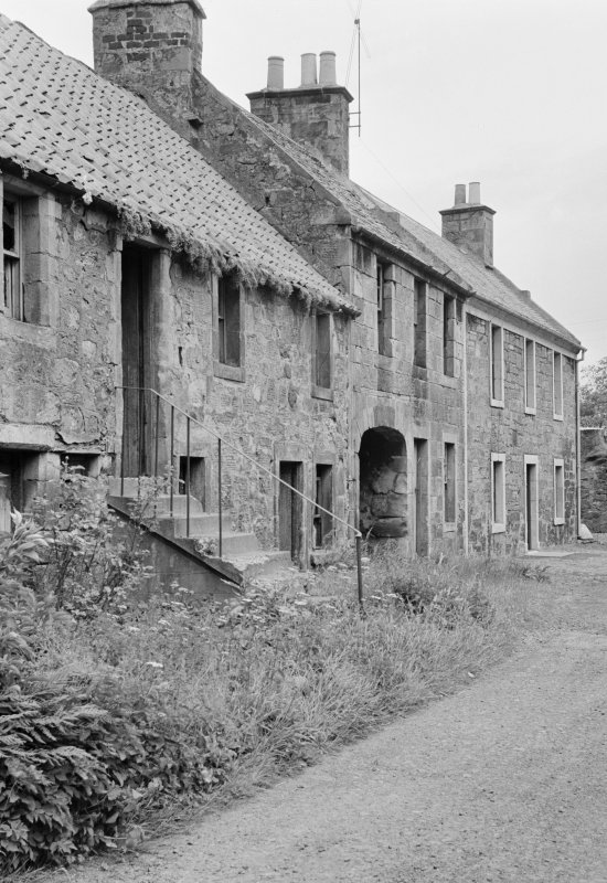View of houses in Balmblae, Falkland.