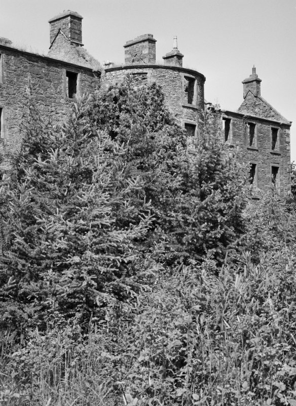 View of Ravenstone Castle from S partly obscured by trees.