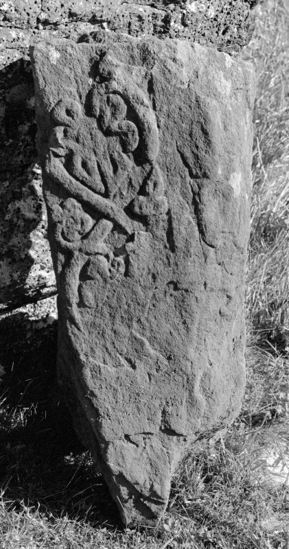 View of fragment of West Highland stone, St Donnan's Church, Kildonnan, Eigg.
