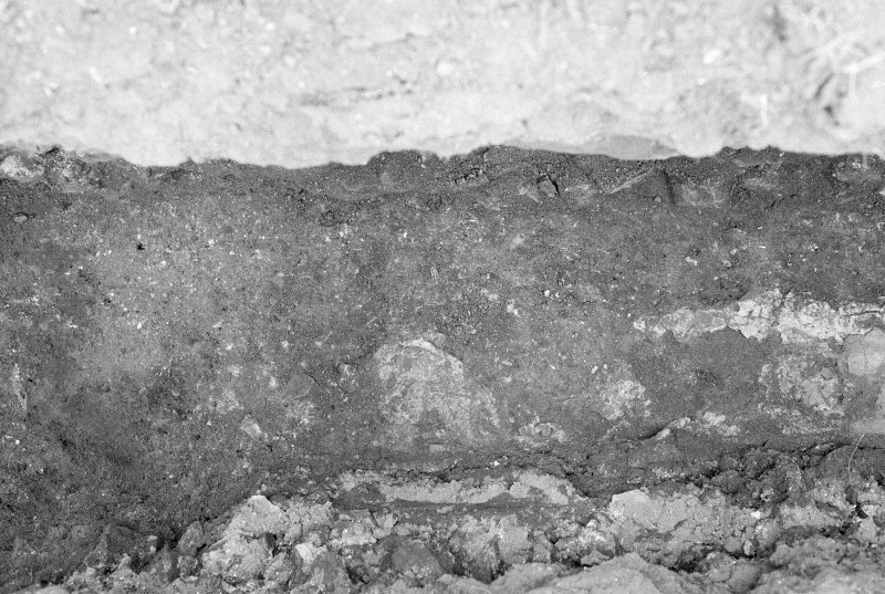 Excavation photograph : mortar/tile impressions looking north.