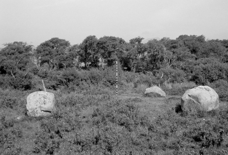 Ballymichael four poster stone circle, from S