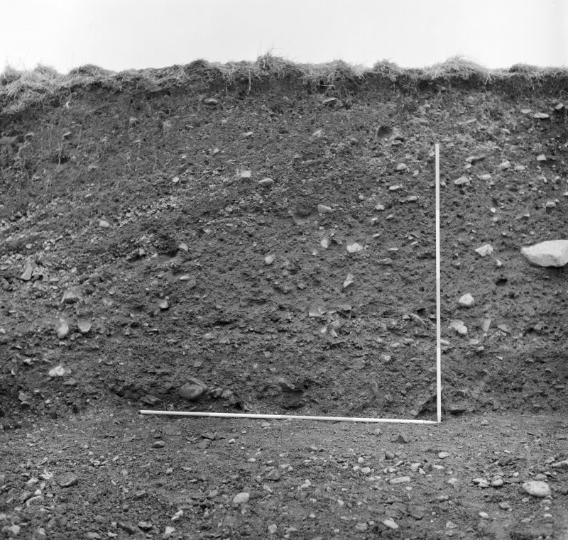 Excavation photograph - west section, centre segment.