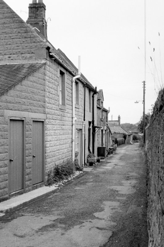 General view of rear of houses.