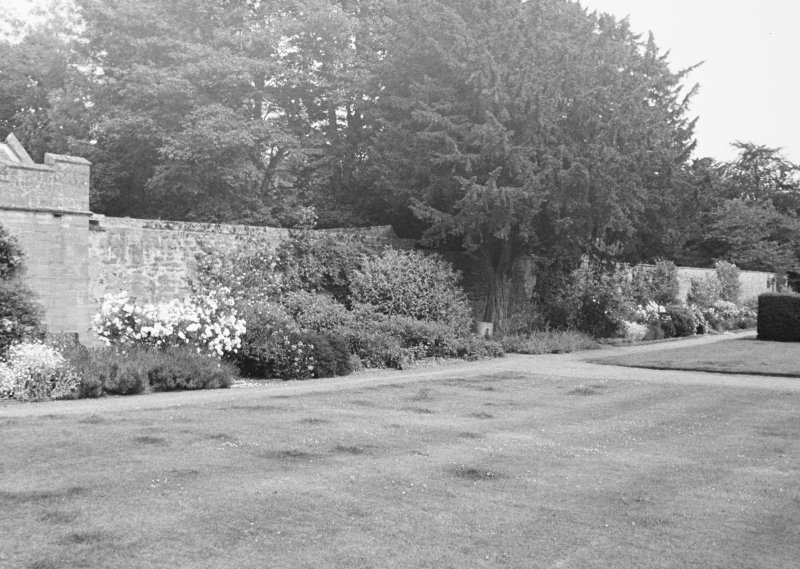 General view of garden wall.