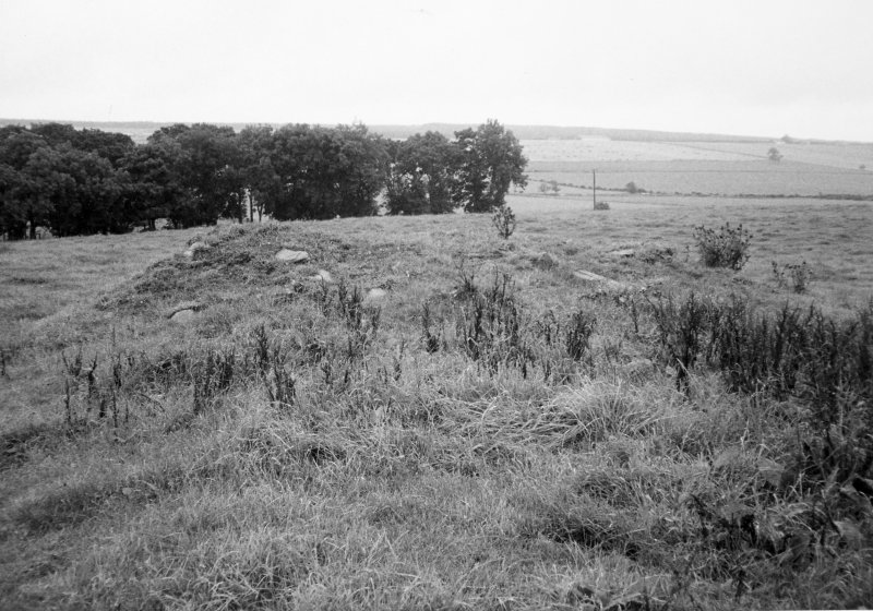 General view of site of Castle
