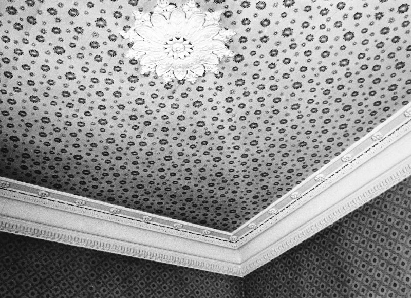 Glasgow, 6 Rowan Road, Craigie Hall, interior. View of ceiling.