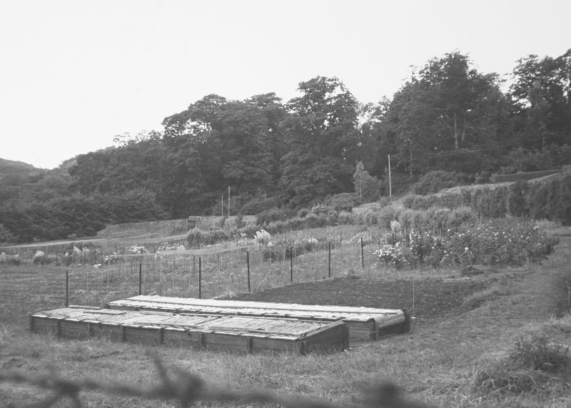 Glendoick House, walled garden. General view with coldframes.