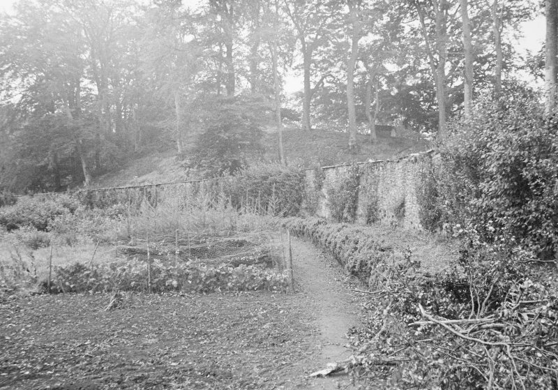 View of walled garden.