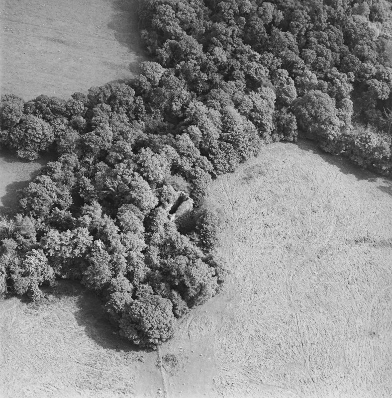 Kilmahew Castle, oblique aerial view, taken from the WNW.