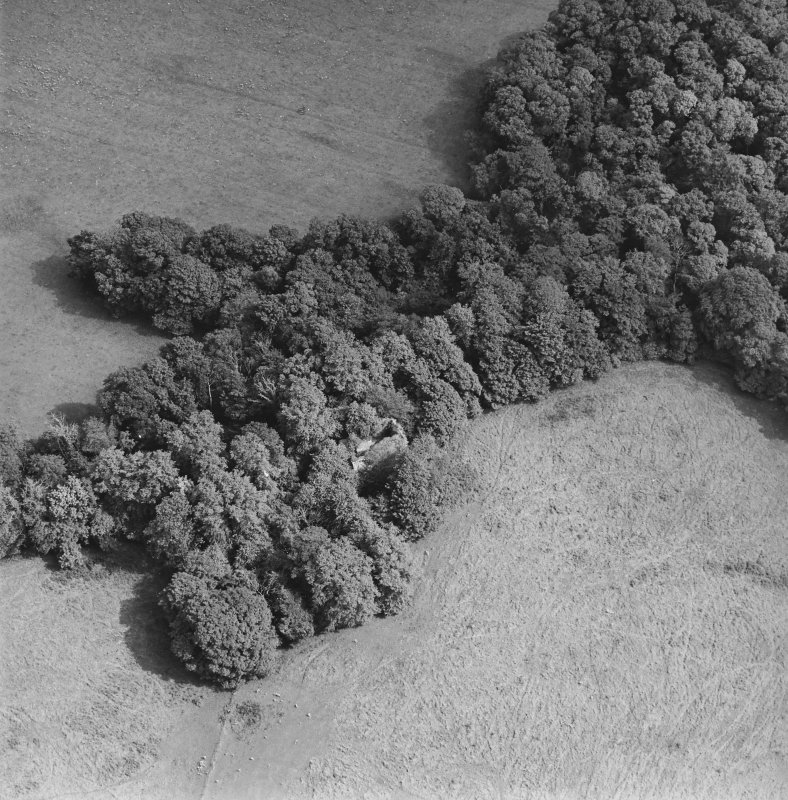 Kilmahew Castle, oblique aerial view, taken from the W.