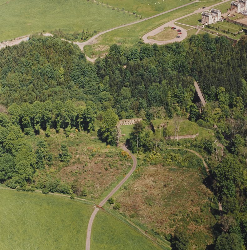 Aerial view of Cadzow Castle, taken from the SSW.