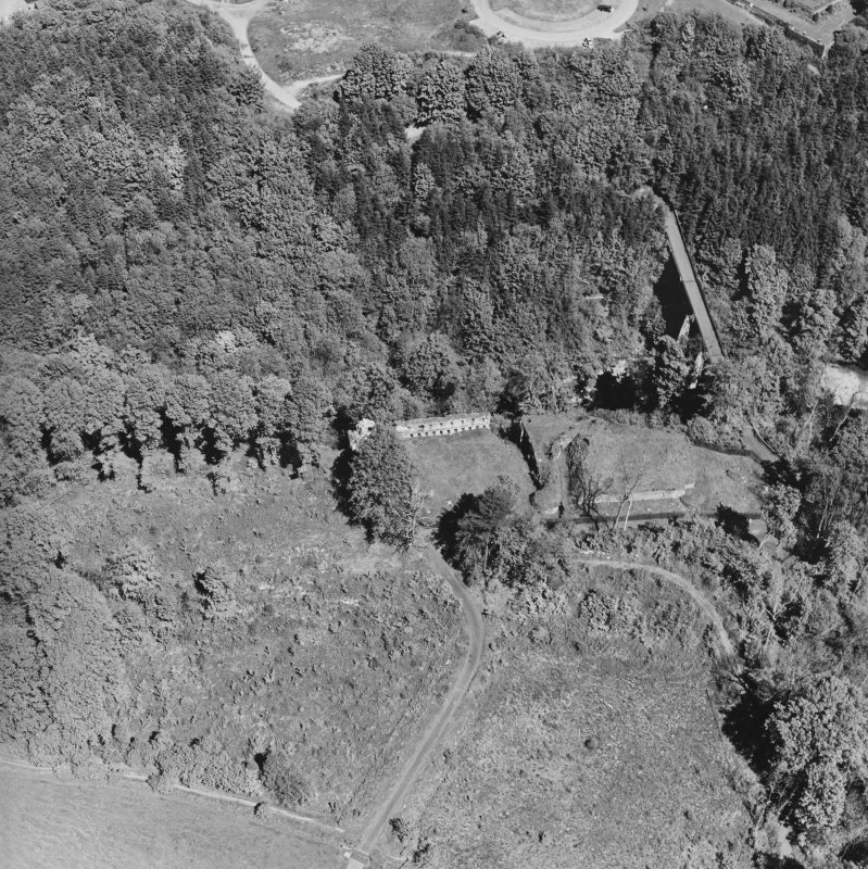 Aerial view of Cadzow Castle and the Duke's Bridge, taken from the S.