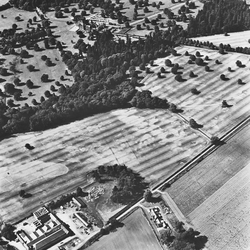 Mains of Glamis and Glamis Castle, oblique aerial view, taken from the ESE, showing a pair of linear cropmarks in the centre of the photograph, and further cropmarks in the centre right. Glamis Castle is visible in the centre.